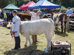 40-th-charleville-show-015