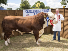 40-th-charleville-show-046-1