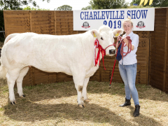 40-th-charleville-show-062