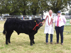 40-th-charleville-show-187-1