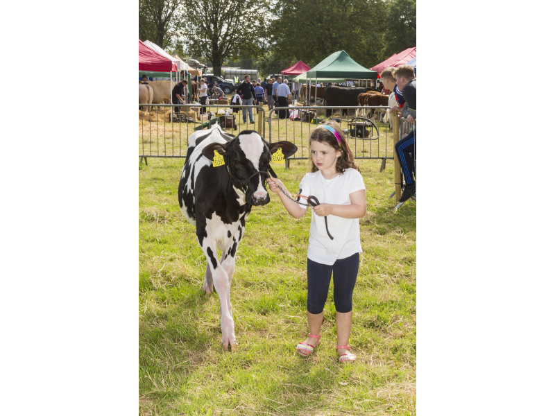 40-th-charleville-show-004-1