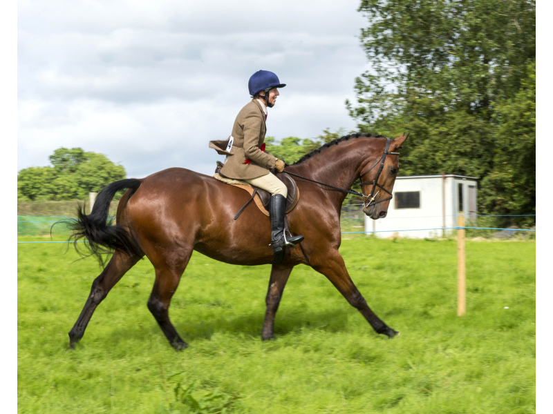40-th-charleville-show-075